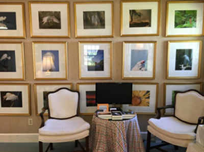 Photo of two white sitting chairs in front of a wall with framed art in the office of Allyson Hurley DDS in Chatham, NJ.